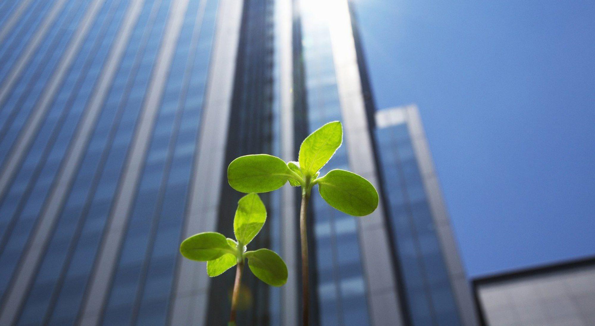 Biodégradable - Ensemble respectons la nature !